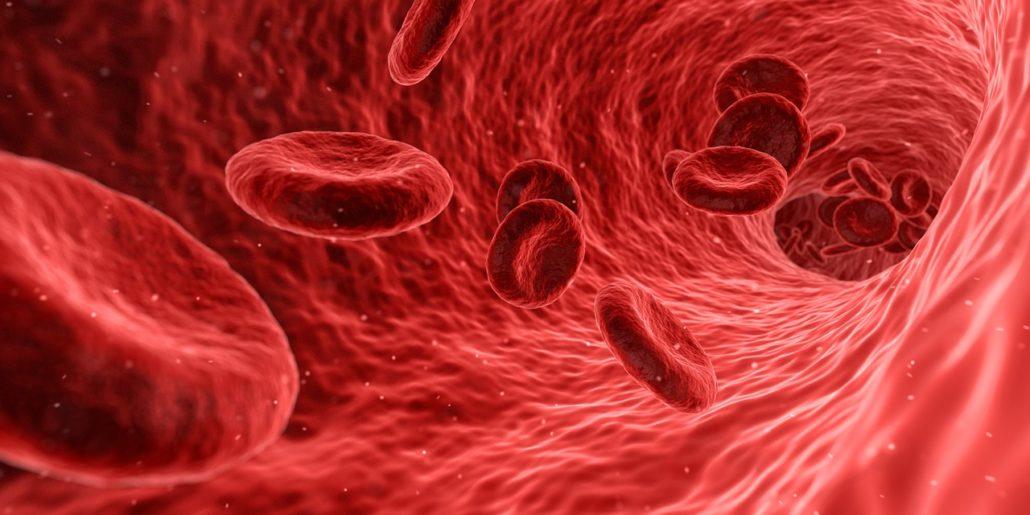 blood proteins